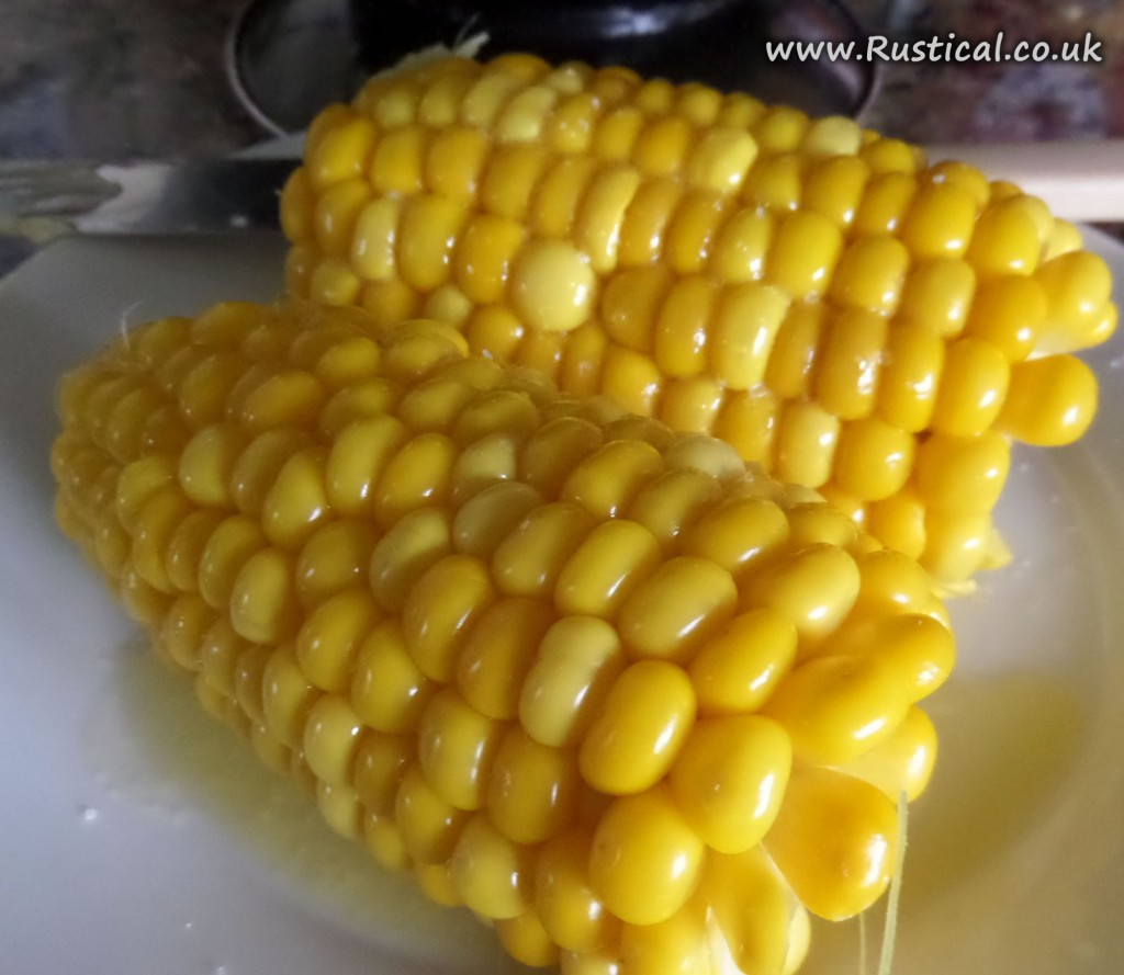 Freshly cocked sweetcorn