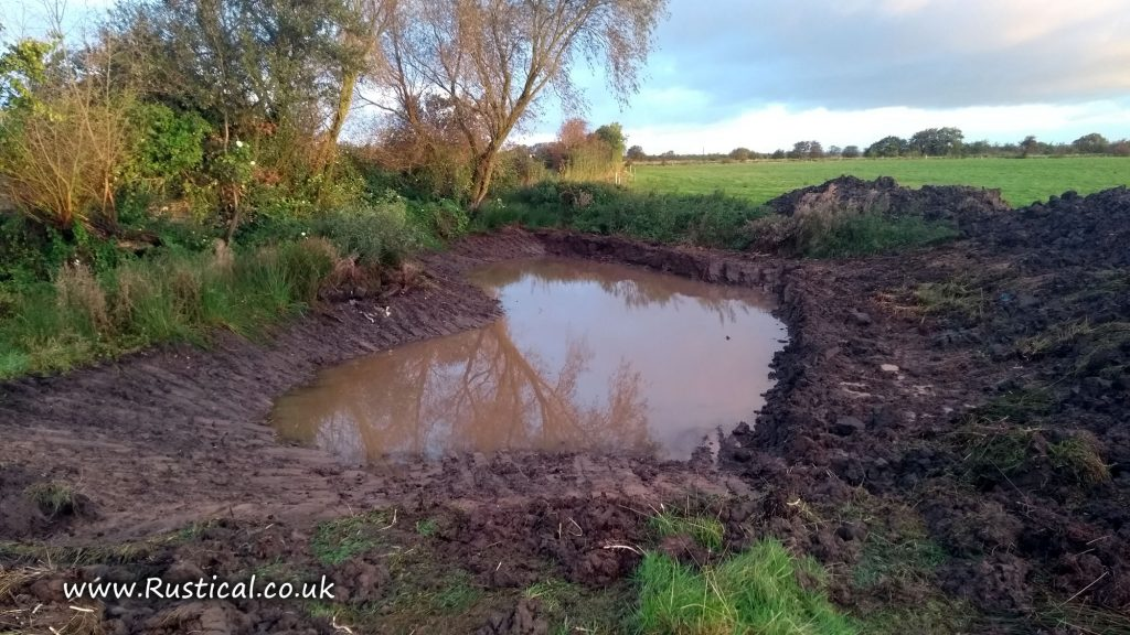 Grazing Pond restoration