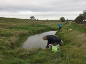 Pond Audit Autumn 2018