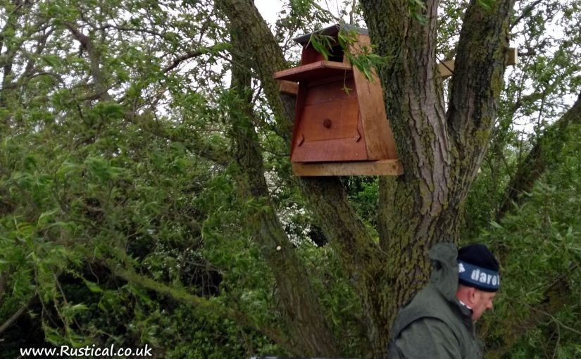 Barn Owl Nest Box Installed